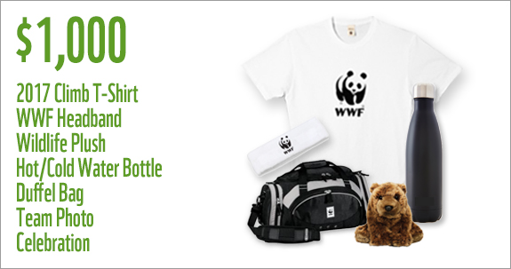 WWF Canada Sunday 1000 Prize for teams
