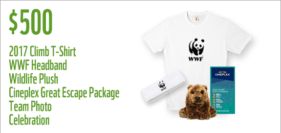 WWF Canada Sunday 500 Prize for teams